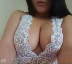 Nelcie transvestite independent escort in Mount Clemens, MI